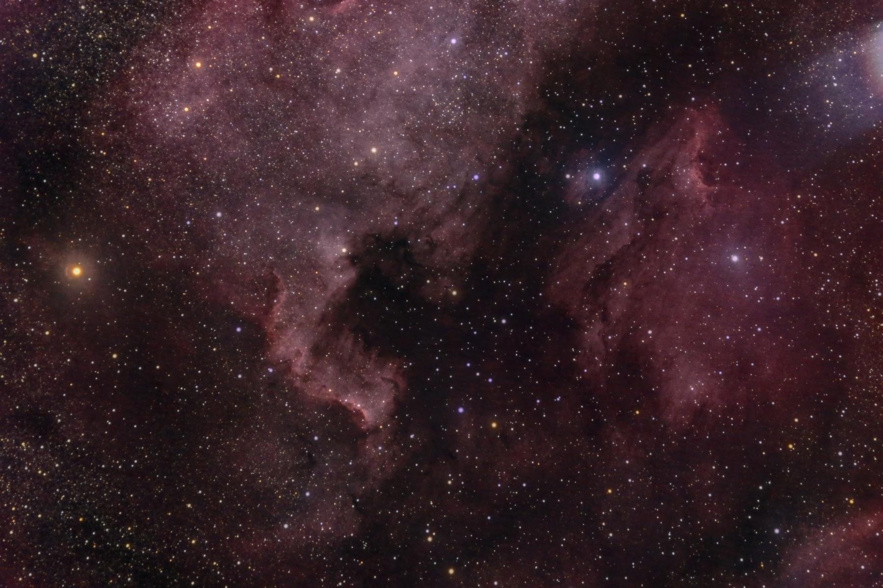 2020-10-19_NGC7000_EvoG_294MC_NEQ5.jpg