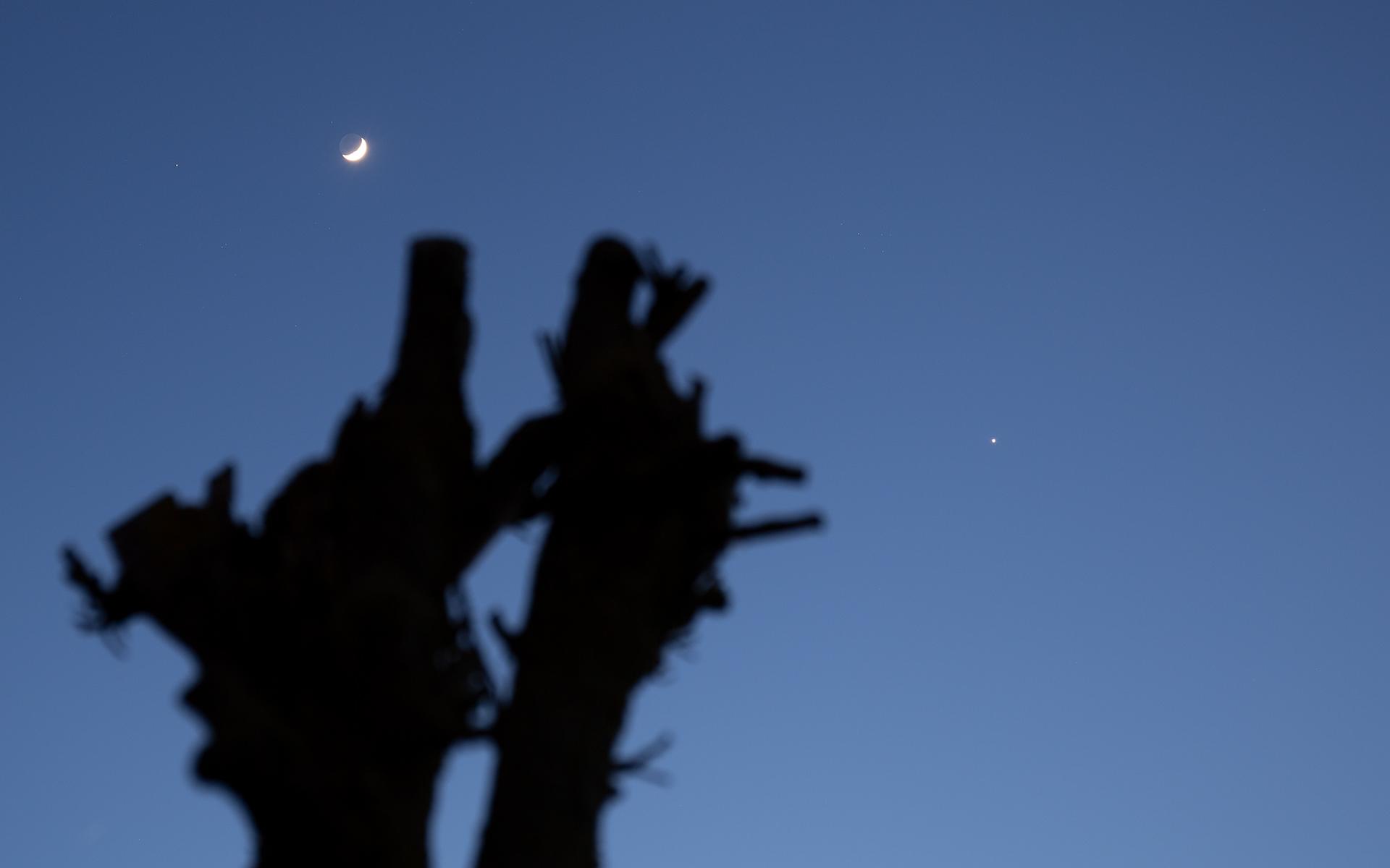 20200329-moon-venus-0030.jpg