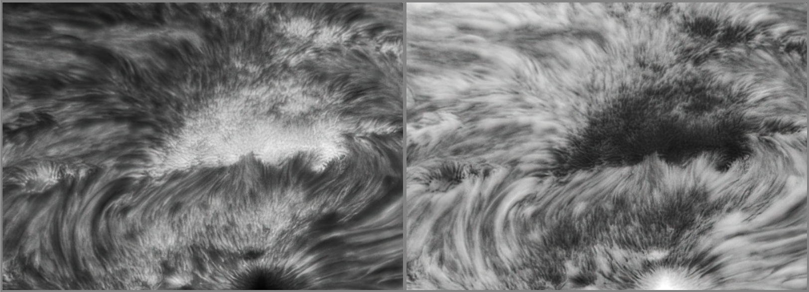 AR2824 Detail 1.png