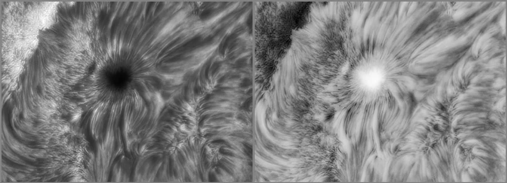 AR2824 Detail 2.png