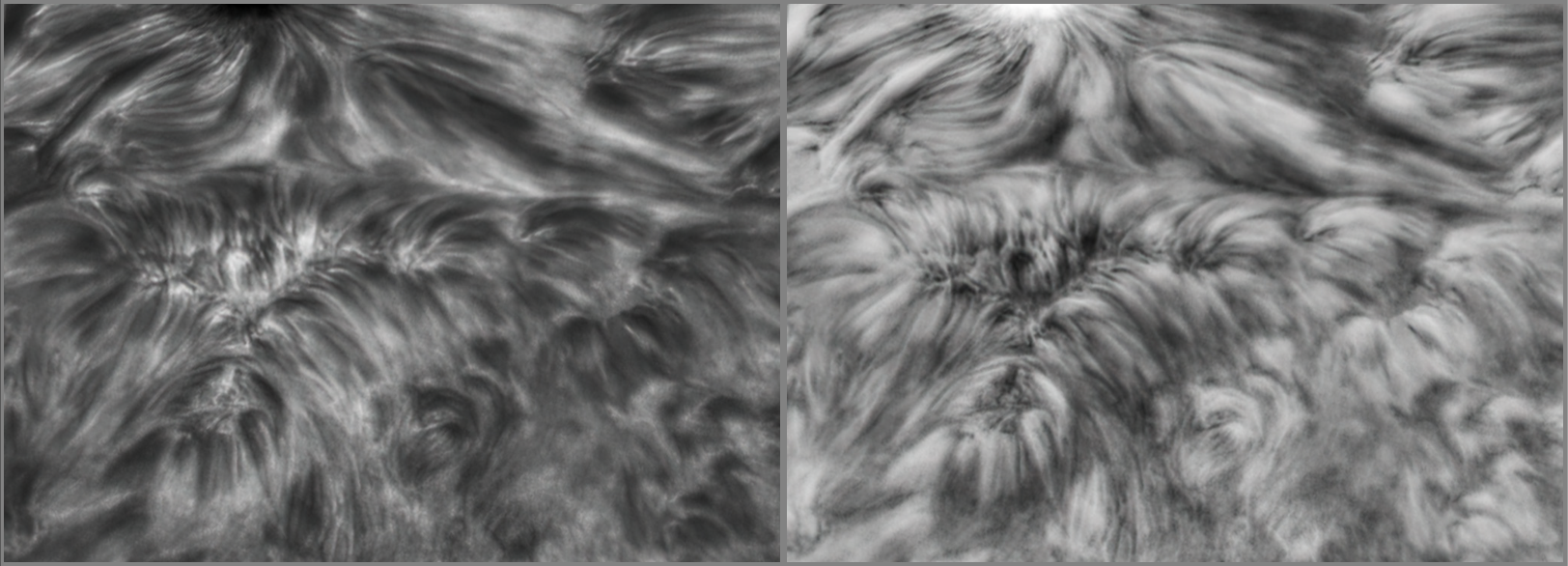 AR2824 Detail 3.png