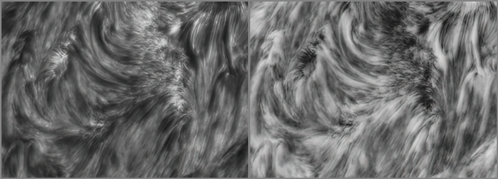AR2824 Detail 4.png