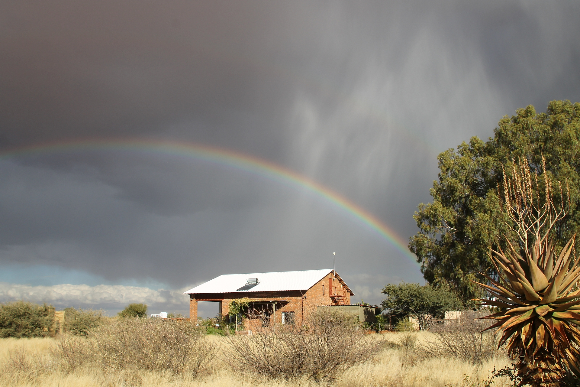 Kiripotib - Regenbogen.JPG