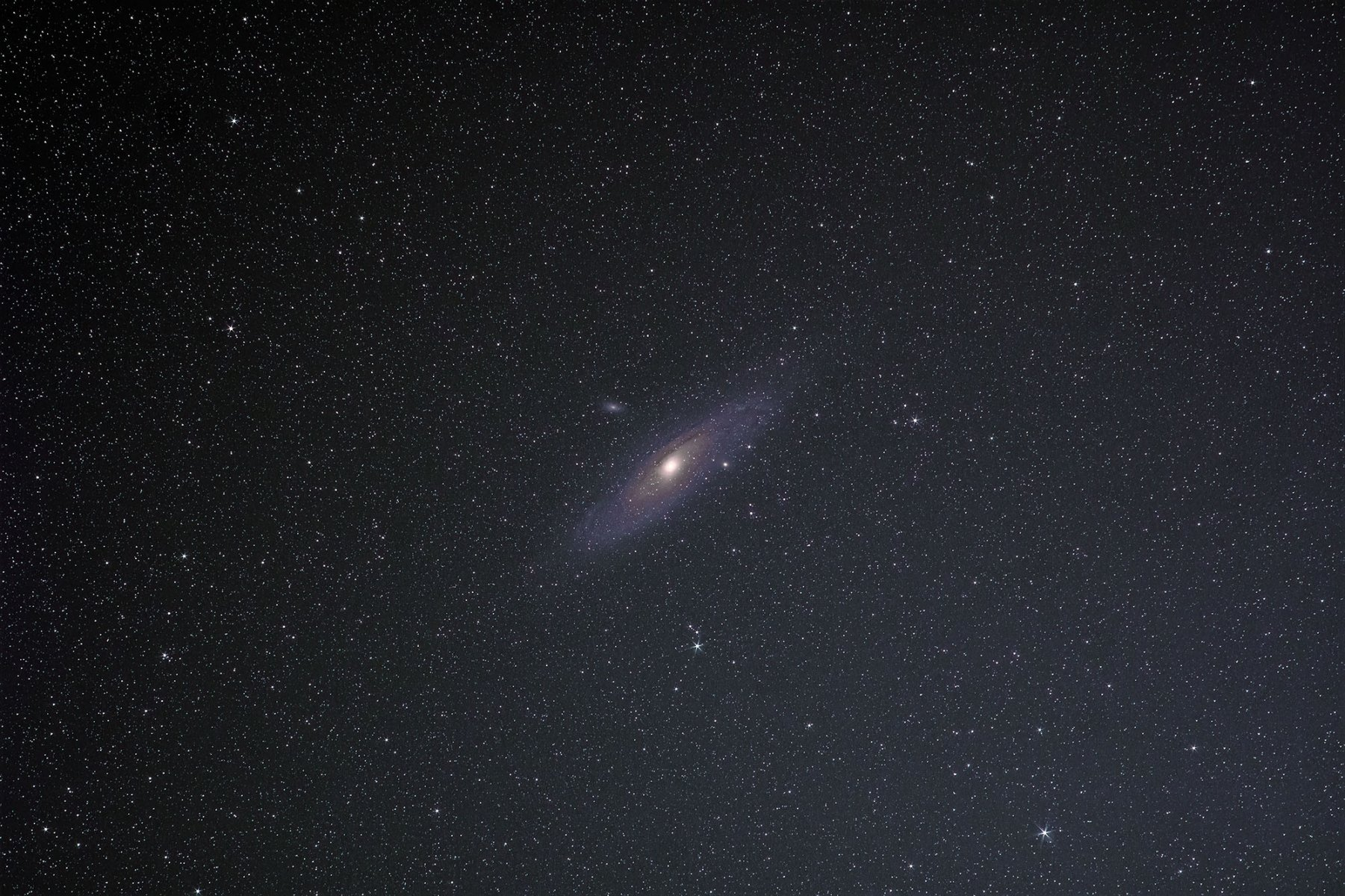 M31 135mm-denoise-low-lights2.jpg