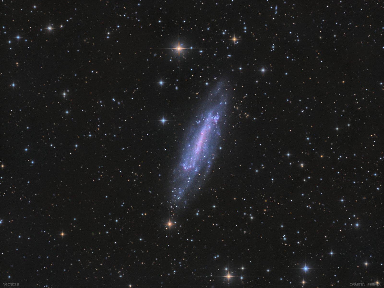 NGC4236 5.jpg