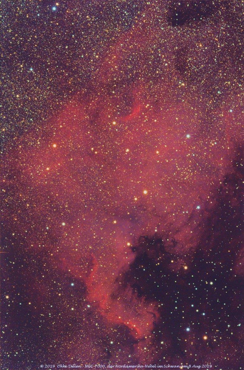 NGC7000_20190808_DSS_q&d_plus_19L10F0D0B_p_fc.jpg