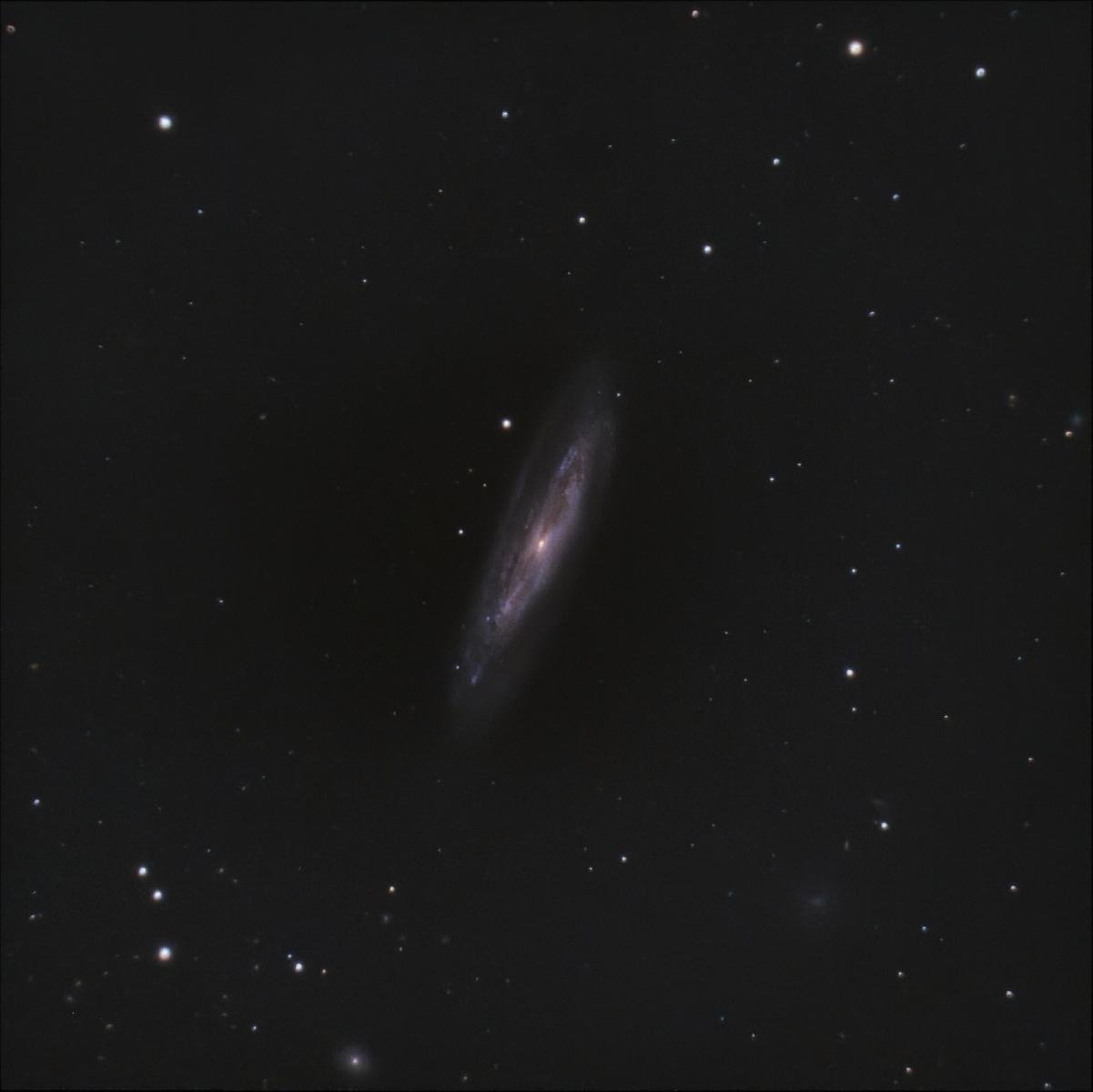 NGC_4192_-_M98.jpg