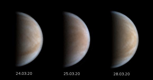 venus-24bis280320.jpg