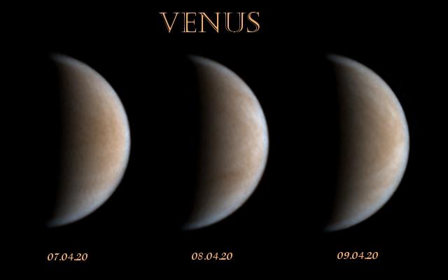 venus-7-90420p150-3er.jpg