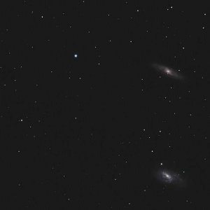 Leo Triplett vom April