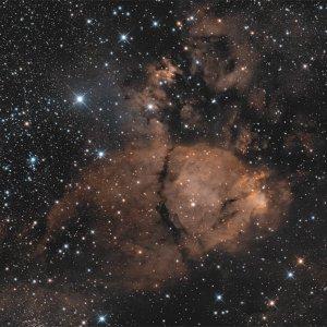 IC 1795 - Fishkopf-Nebel
