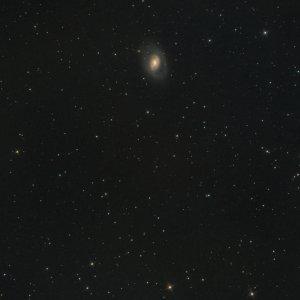 M95, M96, M105, NGC 3371 und NGC 3389