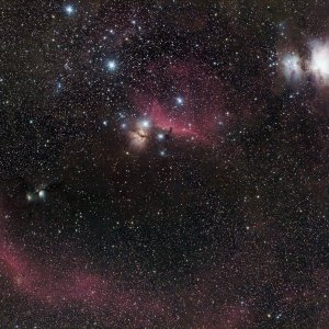Orionkomplex mit 135mm bei F2.0 (2019-02-22)