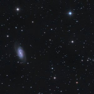 NGC 2903 Leave Alone Betrieb