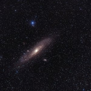 M31 Firstlight