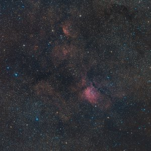Vulpecula Widefield
