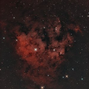 NGC 7822 in BiColor mit RGB Sternen