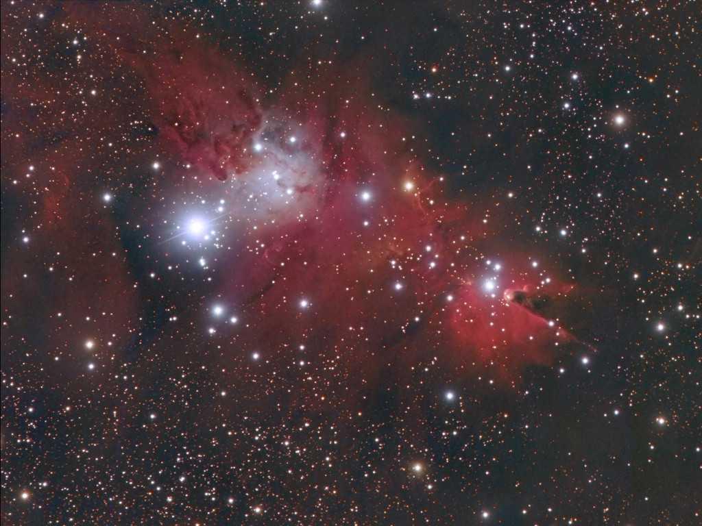2018_02_06 - NGC2264_LRGBweb.jpg
